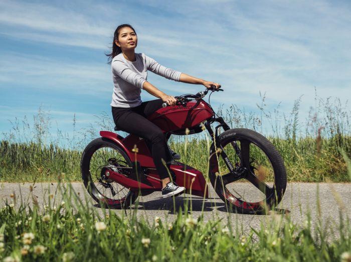 Düsenspeed, e-Bikes suizos con pasión